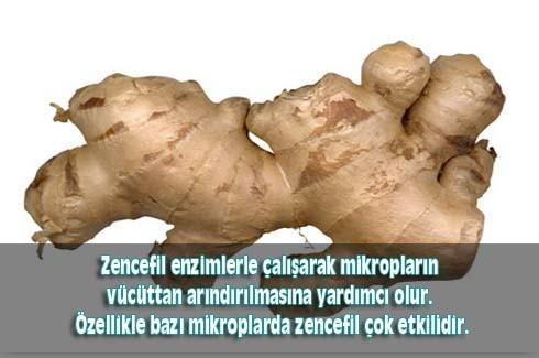 Zencefil kökünün inanılmaz faydaları 4