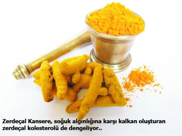Bu besinler kolesterolü önlüyor 6