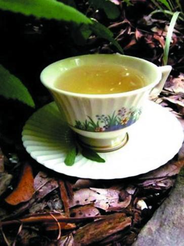 Bitki caylarının faydaları 1