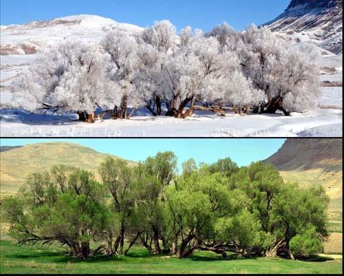 Tek Karede Dört Mevsim  8