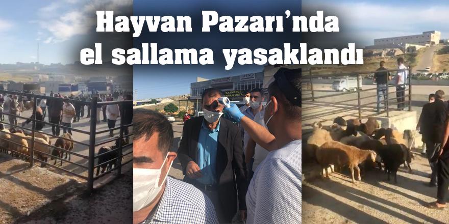 Hayvan Pazarı'nda el sallama yasaklandı
