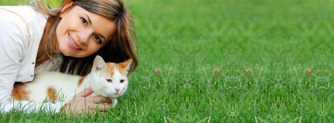 Kediler insanları büyük bir kedi zannediyor