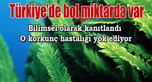 Hangi hastalığın katili Türkiye\'de çıktı ?