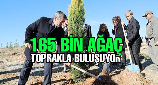 Şahinbey Belediyesi hayat veriyor