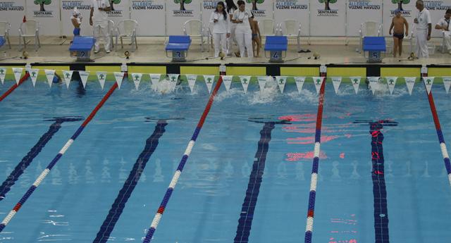 Alleben su sporları şenlikleri başlıyor