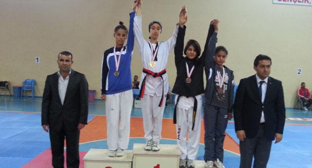 Taekwondocular Türkiye finallerinde