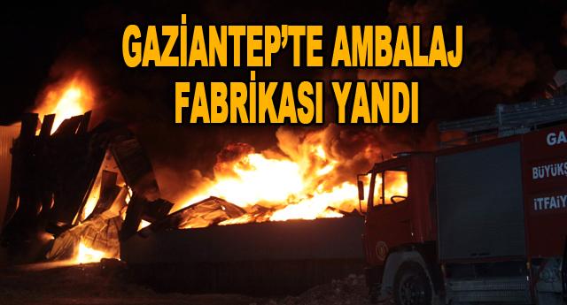 Gaziantep'te ambalaj fabrikasında çıkan yangın korkuttu
