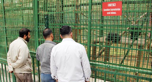 Hayvanat Bahçeleri kapatılsın
