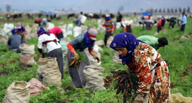 Mevsimlik işçiler mecliste