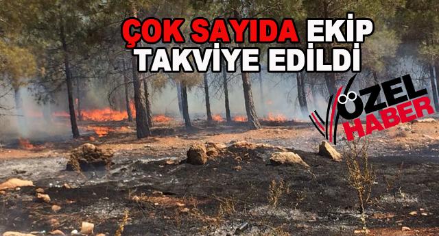 Yamaçtepe'de büyük yangın