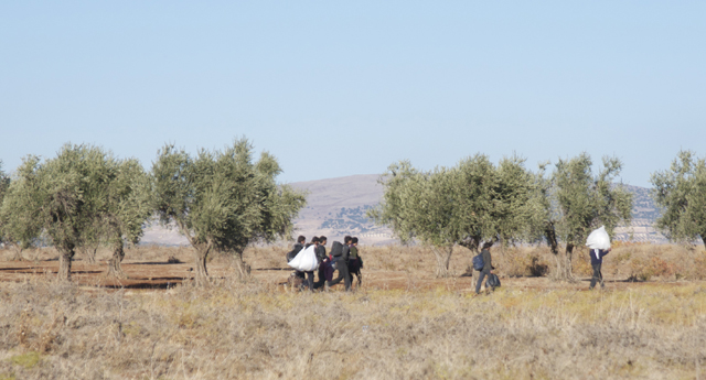Suriye Yollarda sergisine davet
