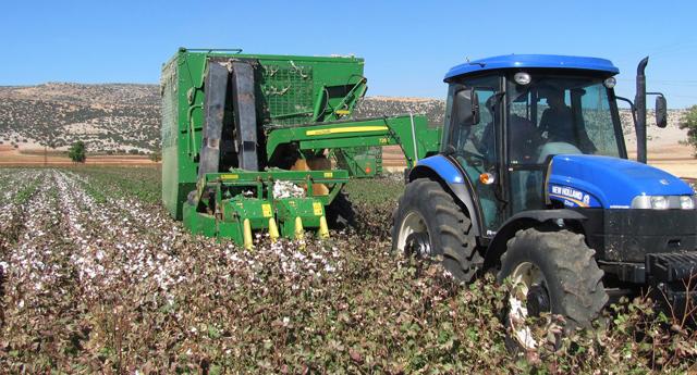 Pamukta makineli hasat dönemi