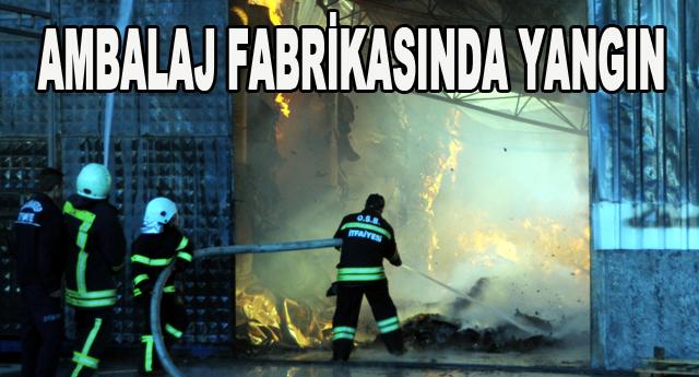Organize'de yangın