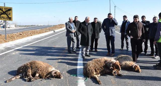 3 kurban kesilerek trafiğe açıldı