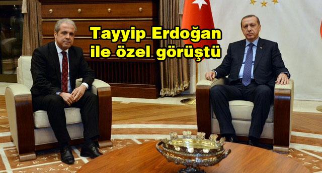 Şamil Tayyar Saray'da