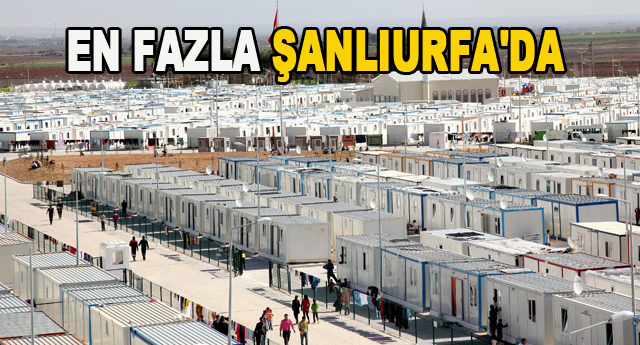 5 ayrı kampta 51 bin Suriyeli