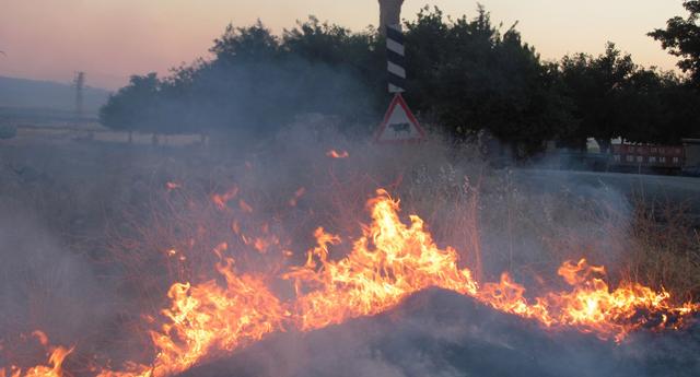 Anız yangınları zarar veriyor