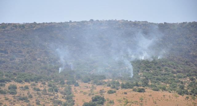 Nizip'te korkutan yangın