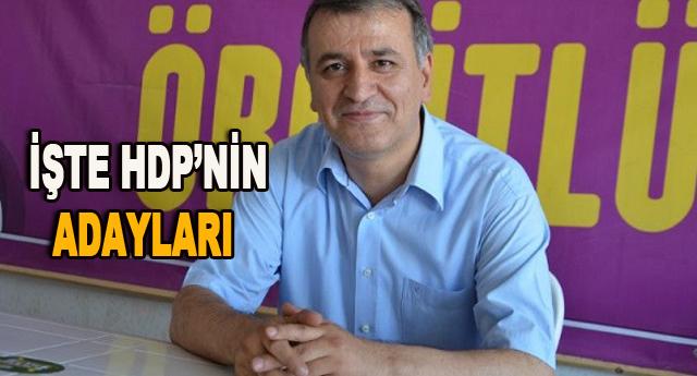HDP'de Mahmut Toğrul 1. sıra adayı
