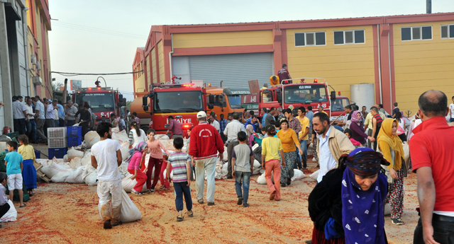 150 ton biber kül oldu