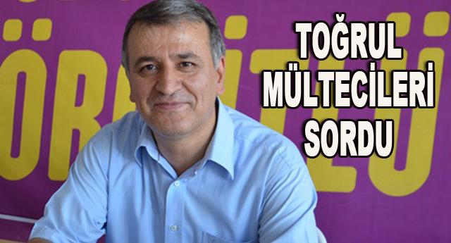 Başbakan Ahmet Davutoğlu'na sordu