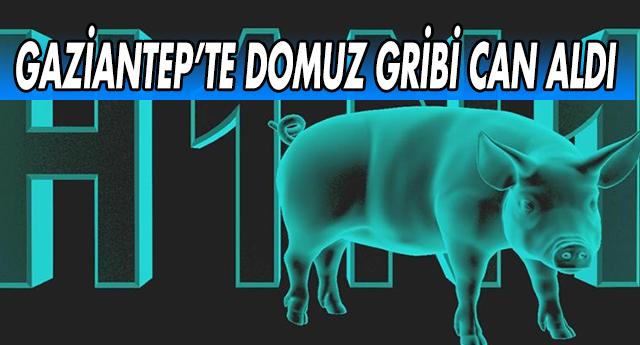 GAZİANTEP'TE DOMUZ GRİBİ CAN ALDI !