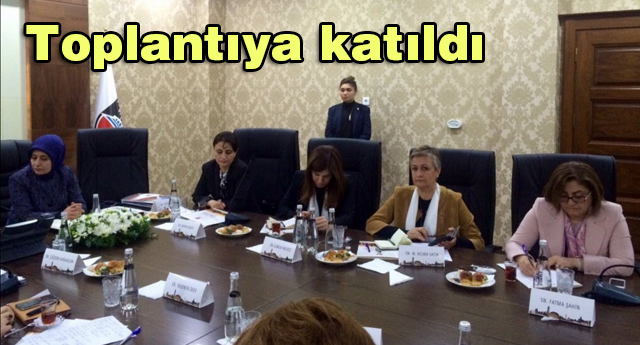 Şahin  Sur'daki toplantıya katıldı