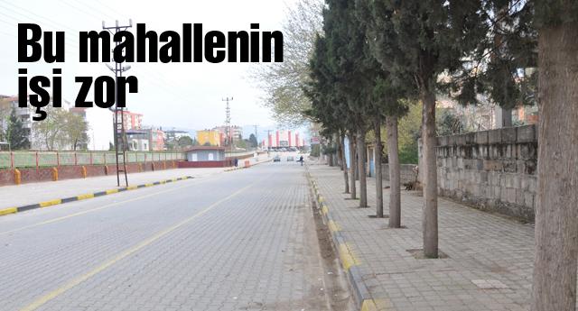 MAHALLELİNİN 'DİREKSİYON' SINAVI