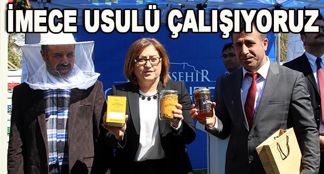 Büyükşehir Belediyesi, arıcılara 2 bin sertifikalı kovan dağıttı