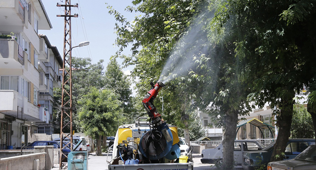Sivrisinek mücadelesi