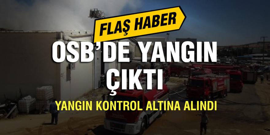 Organize Sanayi Bölgesi'nde yangın çıktı: Kontrol altına alındı