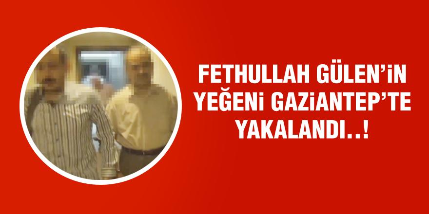 Fethullah Gülen'in Gaziantep'te yeğeni yakalandı