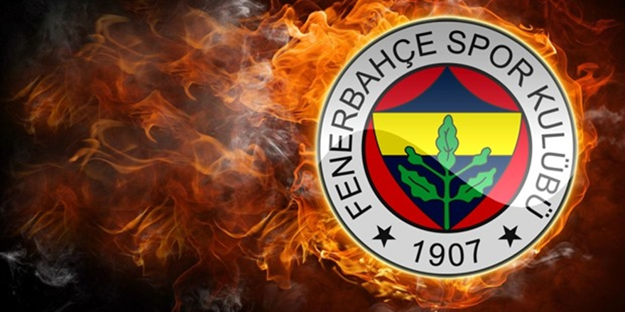Dick Advocaat, Fenerbahçe'de!