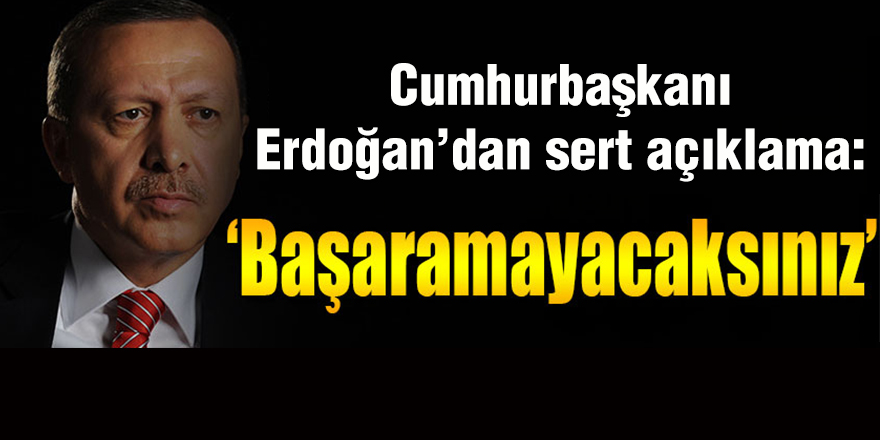 Cumhurbaşkanı Erdoğan'dan sert açıklama: Başaramayacaksınız!