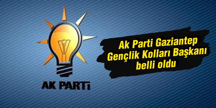 Ak Parti Gaziantep Gençlik Kolları Başkanı belli oldu