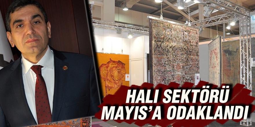 HALI SEKTÖRÜ MAYIS'A ODAKLANDI