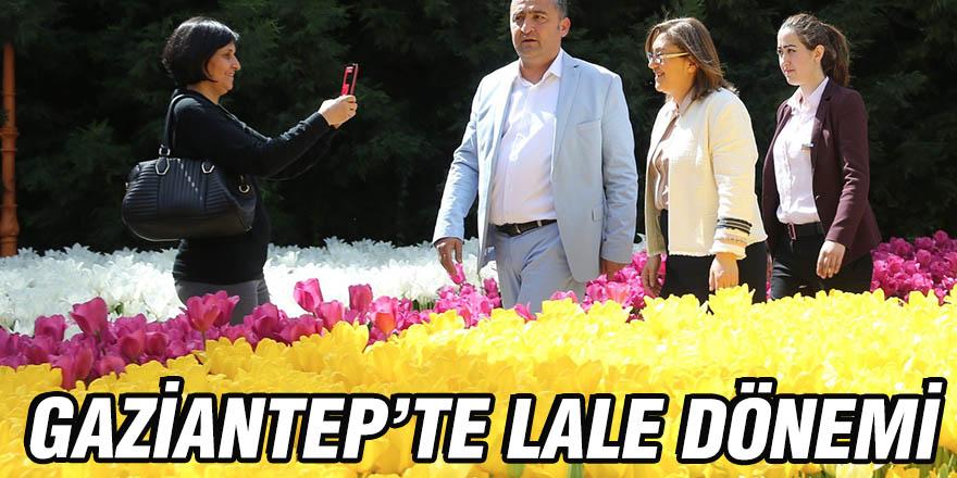 GAZİANTEP'TE LALE DÖNEMİ
