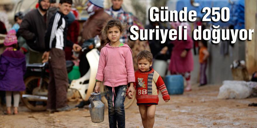 Günde 250 Suriyeli doğuyor