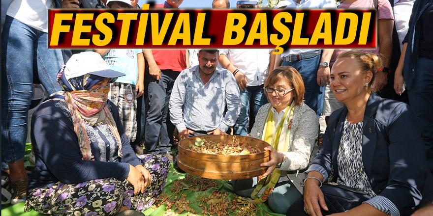 Festival başladı