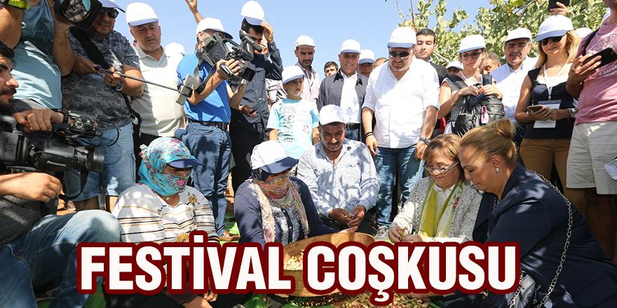 Festival coşkusu