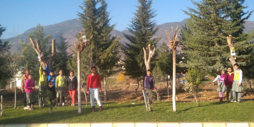 Öğrenciler ağaçlara yuva yaptı