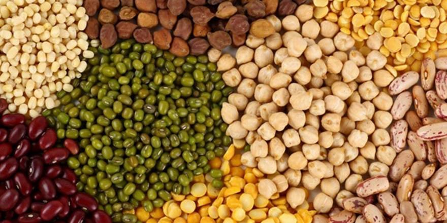 Gıda İhracatçıları Çalışmalarını Artırmak İstiyor