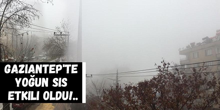 Gaziantep'te yoğun sis etkili oldu!..