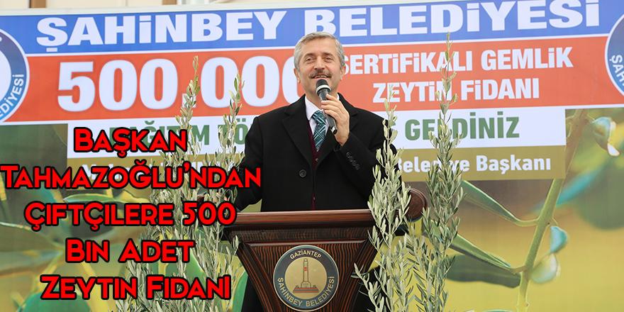 Başkan Tahmazoğlu'ndan Çiftçilere 500 Bin Adet Zeytin Fidanı