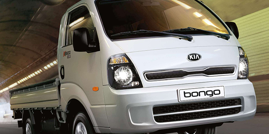 Bongo rüzgarı esecek