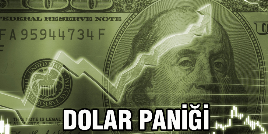 Dolar paniği