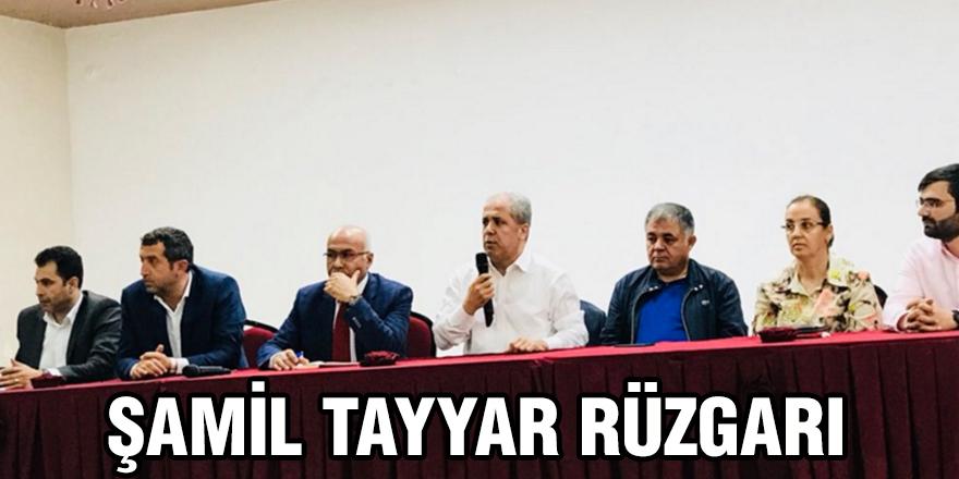 Şamil Tayyar rüzgarı