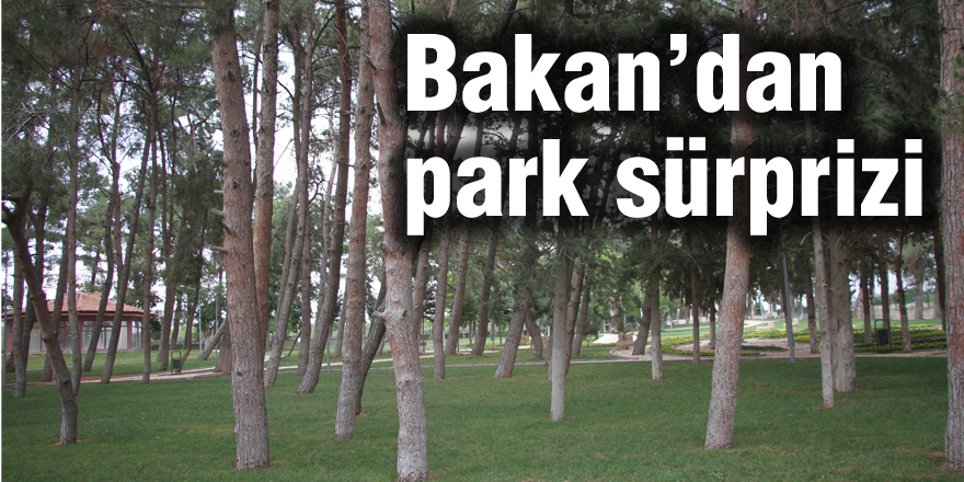 Bakan'dan park sürprizi