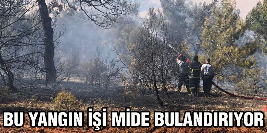 Bu yangın işi mide bulandırıyor