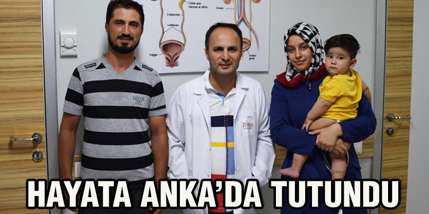 Hayata Anka'da tutundu